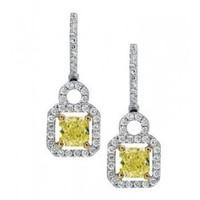 1.51 Ctw White & Fancy Diamond Earrings