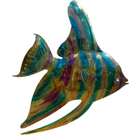 Rainbow Angelfish