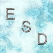 ESD SLIDE VERTICAL 4 - V4-100