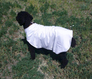 Heat Reflective Cooling Dog Jacket