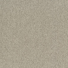 Desso Palatino B359-1321 - 5 m2 Box / 20 Tiles - Commercial Contract Carpet tiles 500 mm x 500 mm