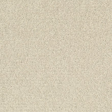 Desso Palatino B359-2928 - 5 m2 Box / 20 Tiles - Commercial Contract Carpet tiles 500 mm x 500 mm