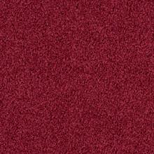 Desso Torso A147-4202 - 5 m2 Box / 20 Tiles - Tufted Loop-Pile Commercial Contract Carpet tiles 500 mm x 500 mm
