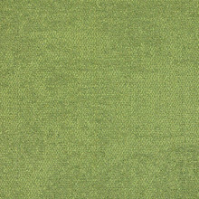 Interface Composure Fern 50x50cm Carpet Tiles 4m2 16 Tiles
