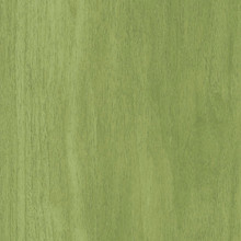 Interface Studio Set Lime 25cm x 100cm Luxury Vinyl Tile LVT 2.5m2