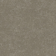 Interface Look Both Ways - Walk Of Life Pumice 50x50cm Luxury Vinyl Tile LVT 2.5m2