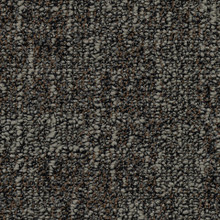 Desso Tweed B529-2921 - 5 m2 Box / 20 Tiles - Tufted Structured Loop Pile Commercial Contract Carpet tiles 500 mm x 500 mm