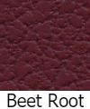 beet-root-100.jpg