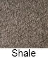 shale-w-name.jpg