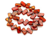Czech Glass Beads 11mm (CZ364)