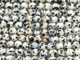 Dalmatian Jasper Round Gemstone Beads 6mm (GS2397)