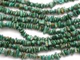 Green Turquoise Chip Beads 6-10mm (TUR568)