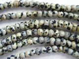 Dalmatian Jasper Rondelle Gemstone Beads 6mm (GS475)