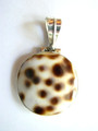 Sterling Silver & Cowrie Shell Pendant 23-25mm (AP615)