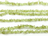 "Peridot Chip Gemstone Beads - 34"" strand (GS499)"