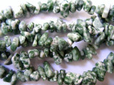 "Tree Agate Chip Gemstone Beads - 34"" strand (GS507)"
