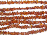 Genuine Amber Chip Beads 6mm (AB11)