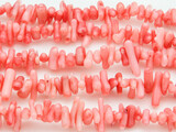 Pink Bamboo Coral Branch Beads 5-18mm (CO514)