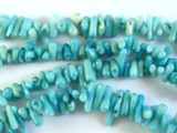 Turquoise Bamboo Coral Branch Beads 5-18mm (CO515)