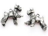 Dog - Schnauzer - Pewter Charm (PW1104)