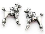 Dog - Poodle - Pewter Pendant (PW1107)