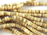 Voluta Shell Heishi Disc Beads 5-6mm - 2 foot strand (SH508)