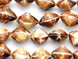 Brown Cockle Shell Beads 27mm (SH425)