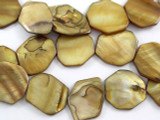 Gold Irregular Tabular Shell Beads 20mm (SH431)