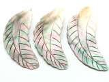 Black Lip Feather Shell Pendant 102mm (AP638)