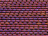 Purple Hematite Rice Gemstone Beads 5-6mm (GS3707)