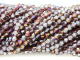 Mauve Bicone Crystal Glass Beads 4mm (CRY356)