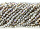 Smoky Gray Bicone Crystal Glass Beads 4mm (CRY359)