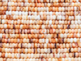 Spiny Oyster Shell Rondelle Beads 4mm (SH555)