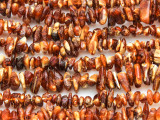 Genuine Amber Chip Beads 3-10mm (AB69)