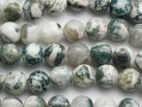 Moss Agate Round Gemstone Beads 10mm (GS4672)