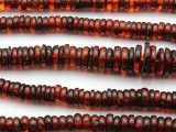 Genuine Amber Graduated Rondelle Beads 6-16mm (AB90)