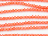Pink Bamboo Coral Round Beads 4mm (CO566)