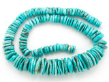 Turquoise Graduated Irregular Disc Beads 7-20mm (TUR1361)