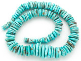 Turquoise Graduated Irregular Disc Beads 6-20mm (TUR1362)
