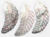 Black Lip Feather Shell Pendant 102mm (AP2087)