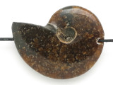 Whole Ammonite Pendant 34mm (AM632)