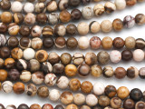Brown Zebra Jasper Round Gemstone Beads 6mm (GS4934)