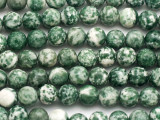 Tree Agate Round Gemstone Beads 8mm (GS5043)