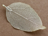 Leaf Pendant - Gold 75mm (AP2126)