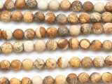 Picture Jasper Faceted Round Gemstone Beads 6mm (GS5091)