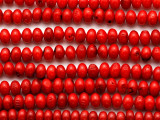 Red Bamboo Coral Rondelle Beads 8mm (CO574)
