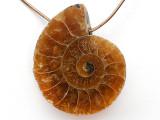 Ammonite Pendant 25mm (AM733)