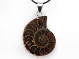 Ammonite Pendant 28mm (AM734)