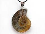 Ammonite Pendant 31mm (AM745)