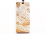 Fossil Coral Agate Gemstone Pendant 61mm (GSP3304)